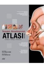Açıklamalı İnsan Anatomisi Atlası
