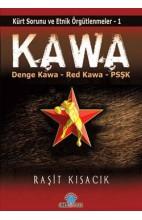 Kawa - Kürt sorunu ve Etnik Örgütlenmeler 1