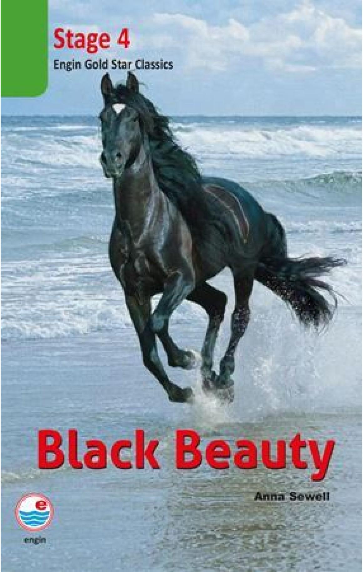 Black Beauty Cd'li-Stage 4