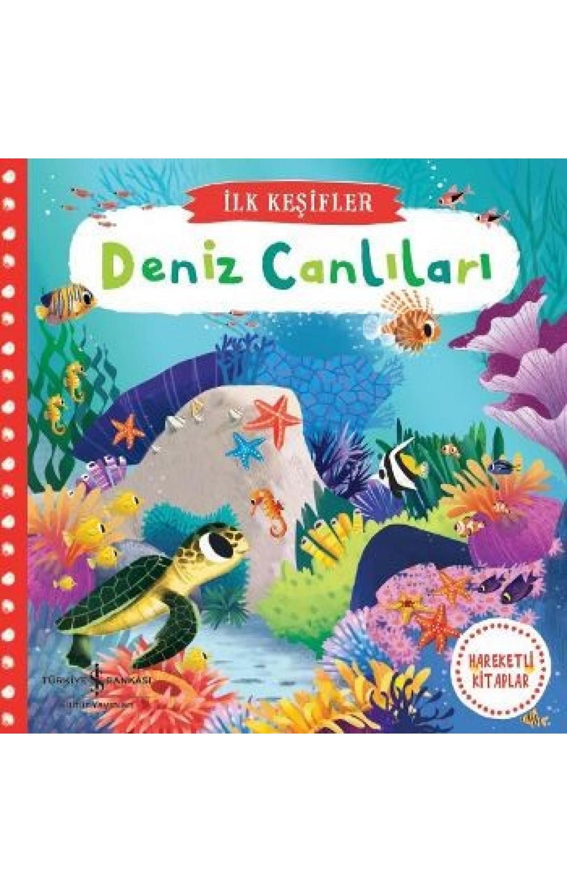 Deniz Canlıları-İlk Keşifler-Hareketli Kitaplar