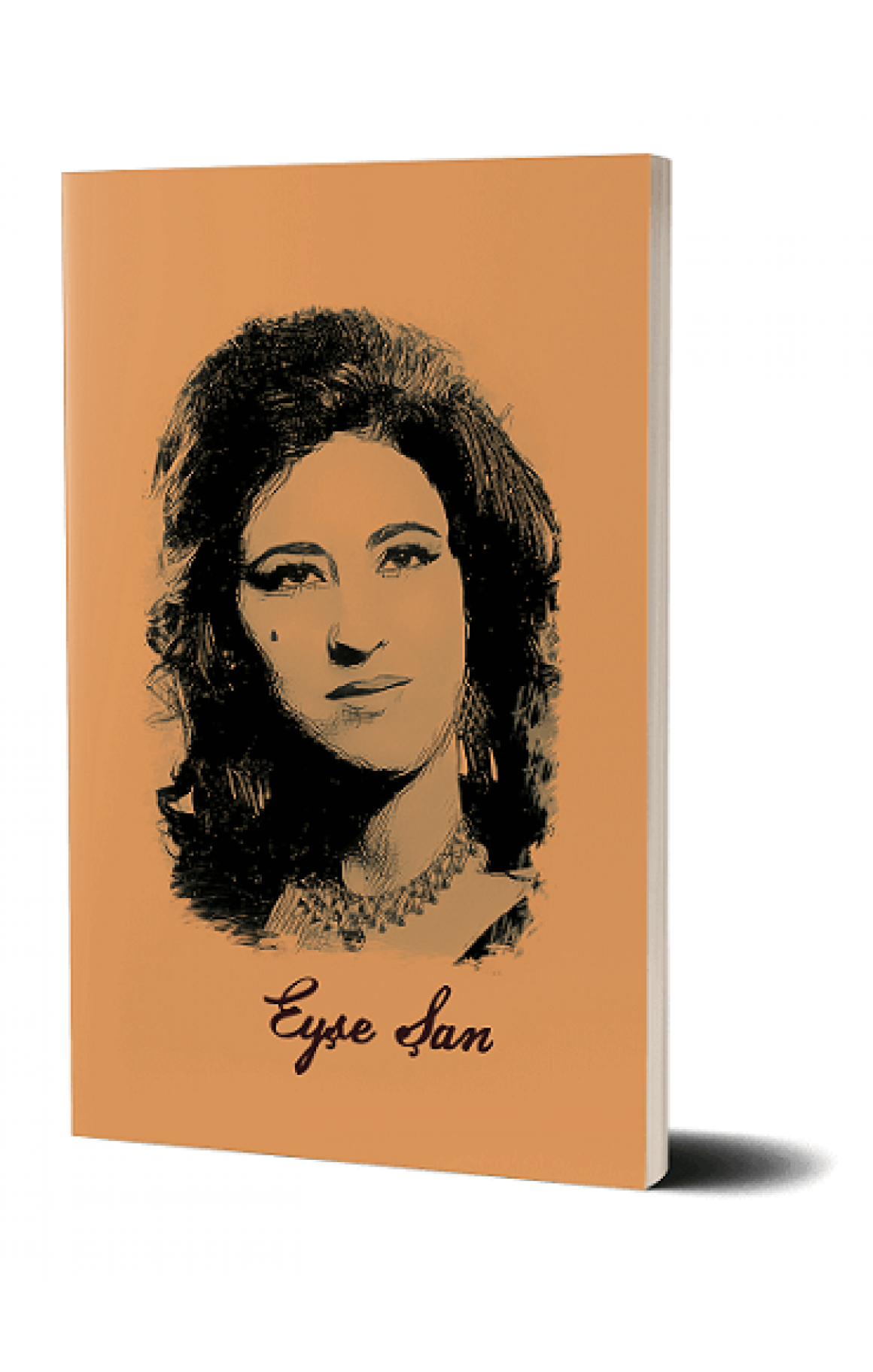 Not Defteri - Eyşe Şan