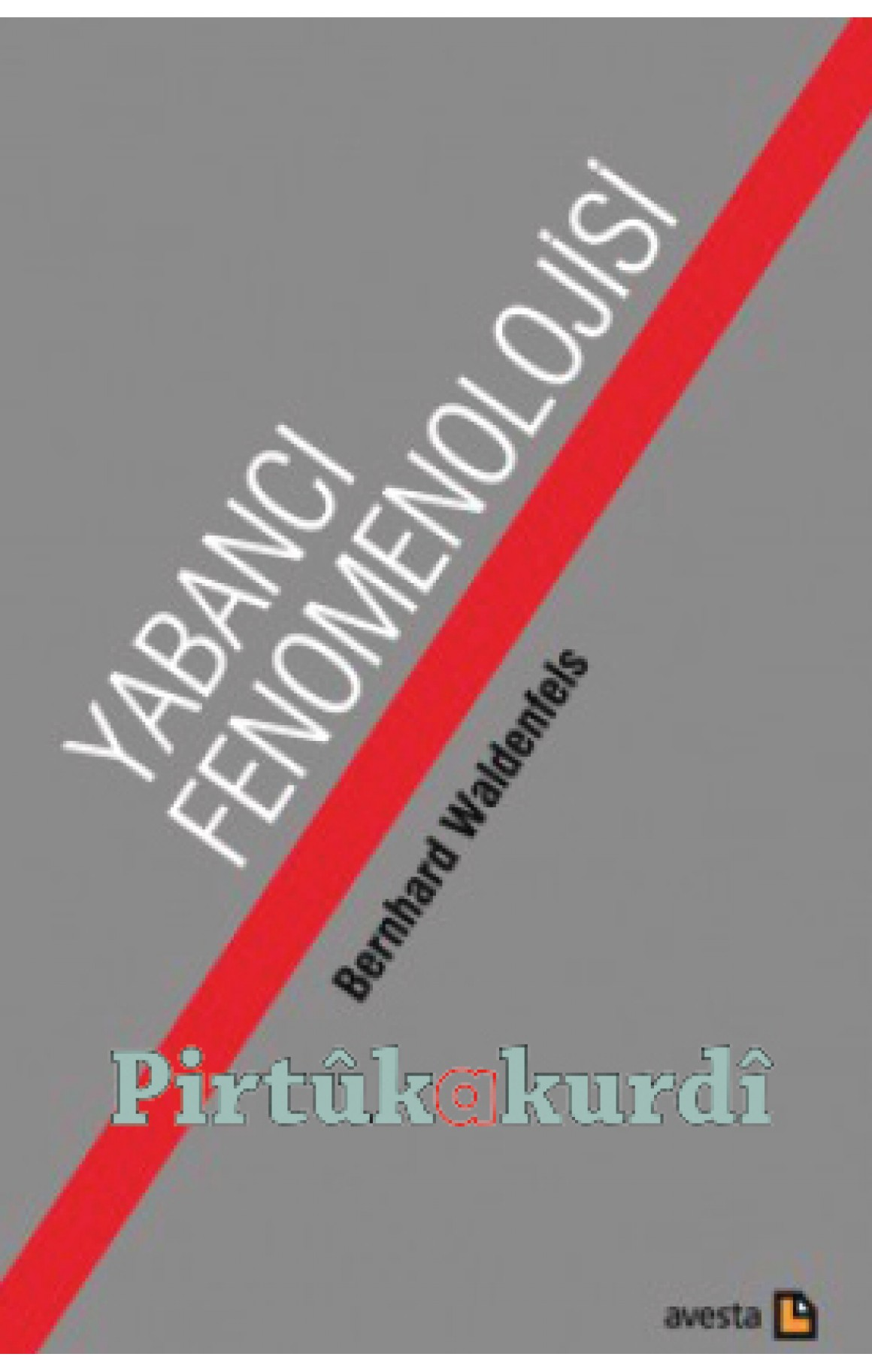 Yabancı Fenomenolojisi