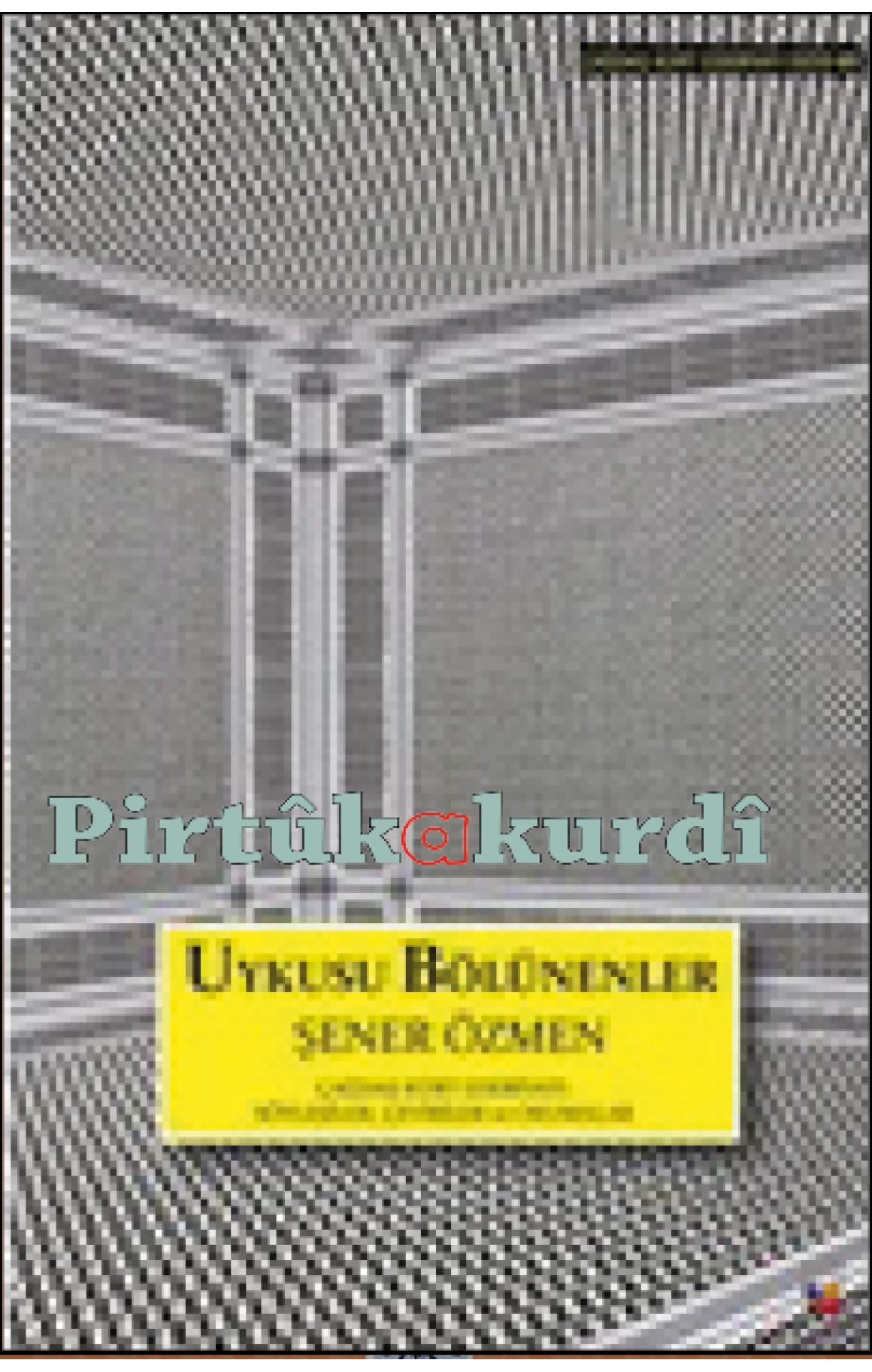 Uykusu Bölünenler-Çağdaş Türk Edebiyatı: Söyleşiler, Çeviriler, Okumalar