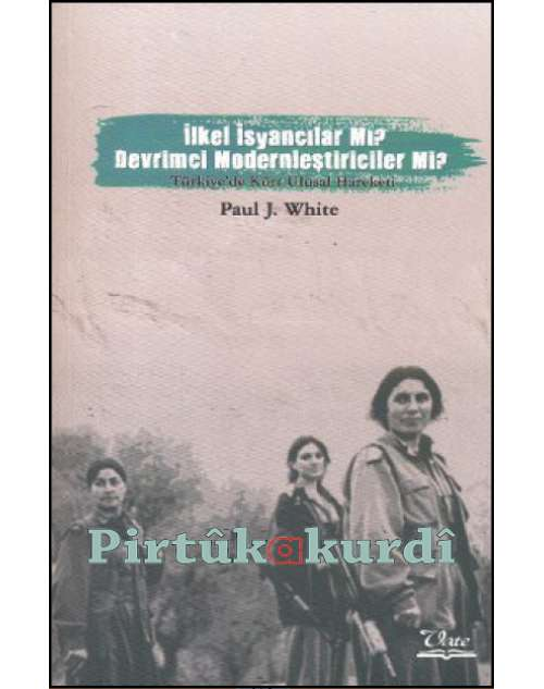 İlkel İsyancılar mı, Devrimci Modernleştiriciler mi? Türkiye'de Kürt Ulusal Hareketi